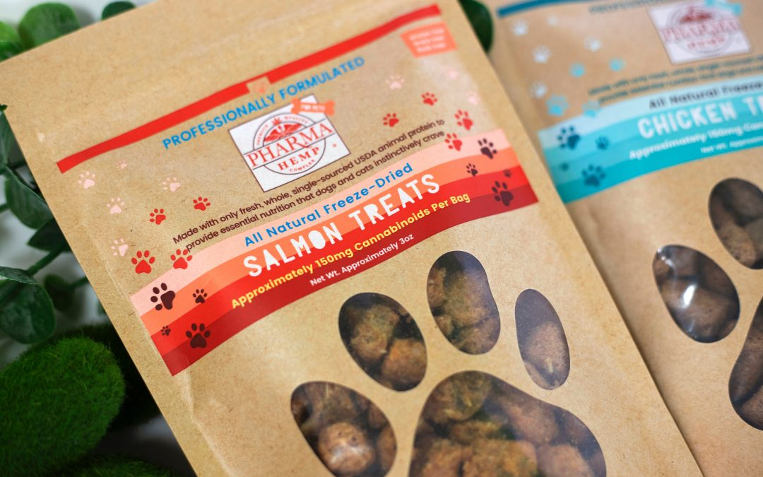 BCP's Favorite Healthy Cat Snacks